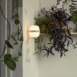 Wally Wall Sconce