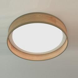 Luca LED Flushmount