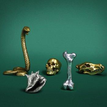 Wunderkammer collection