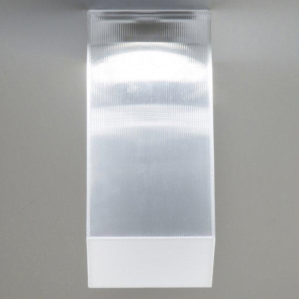 Beetle Cube LED Wall/Ceiling Light