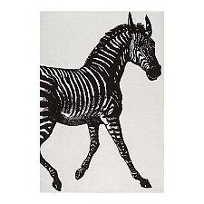 Thomas Paul Zebra Power Loomed Rug