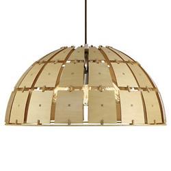 Wooda Coulda Shoulda Dome Pendant