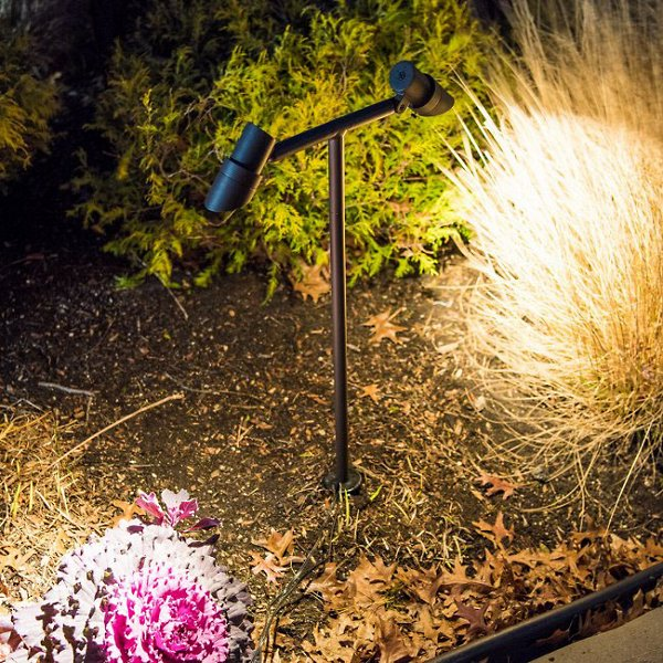 Mini Accent LED Double Path Light