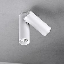 Tub LED 2-Light Flushmount