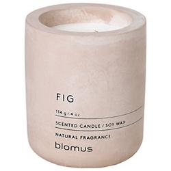 FRAGA Fig Candle