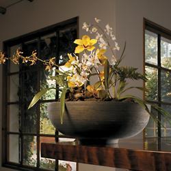 Orinoco Bowl
