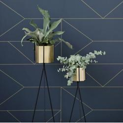 Hexagon Brass Pot and Plant Stand