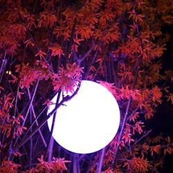 Pearl Bluetooth LED Indoor/Outdoor Lamp
