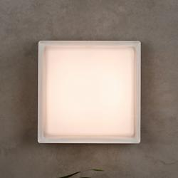 Boxie Outdoor Wall Sconce/Flushmount