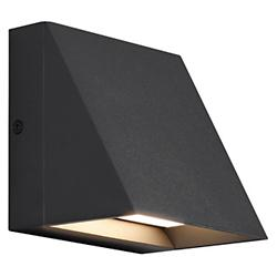 Pitch LED Indoor/Outdoor Wall Sconce
