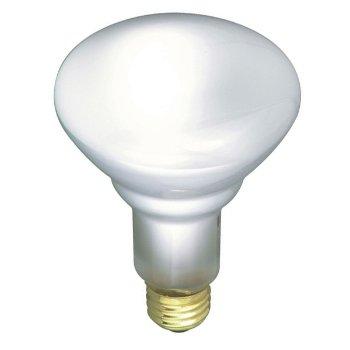 65W 120V BR30 E26 Frosted Shatterproof Bulb
