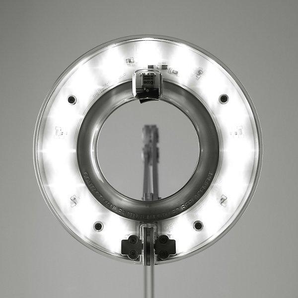 Link Desk Lamp