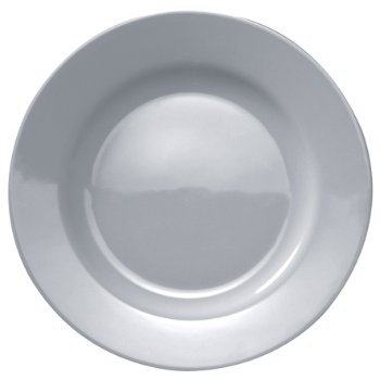 PlateBowlCup Dinner Plate -Set of 4