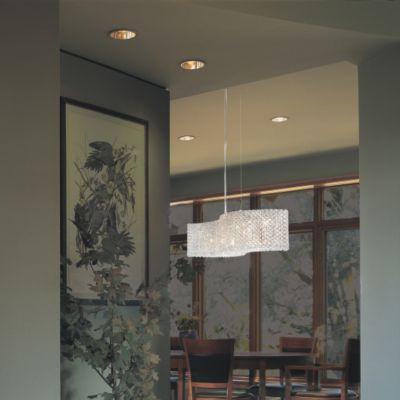 Schonbek Swarovski Lighting Fixture