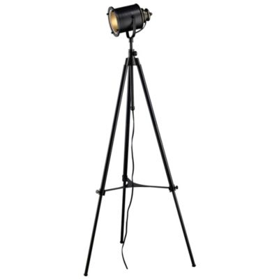 Ethan Adjustable Tripod Floor Lamp By Dimond At Lumens.com