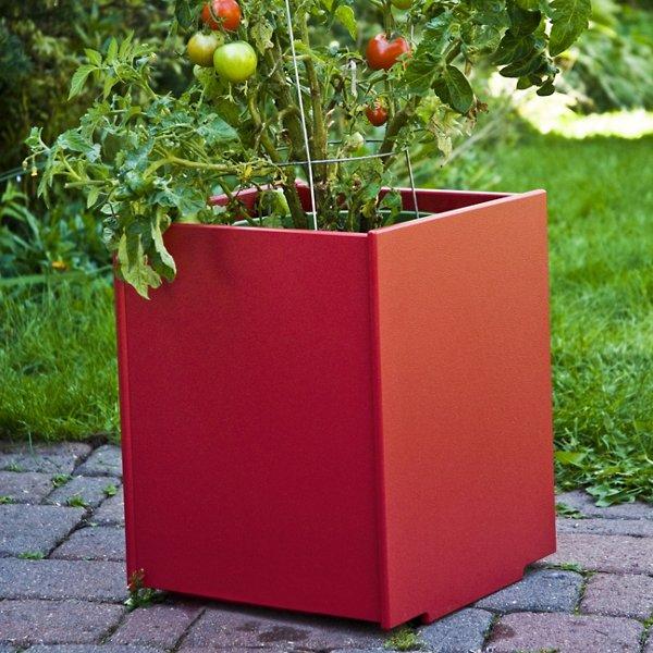 Mondo Planter