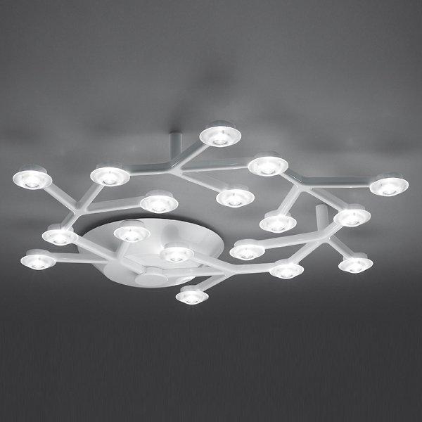 LED Net Circle Ceiling Light