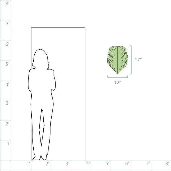 Banana Leaf 2-Light Wall Sconce