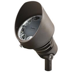 Radiax 21 Watt LED Spotlight