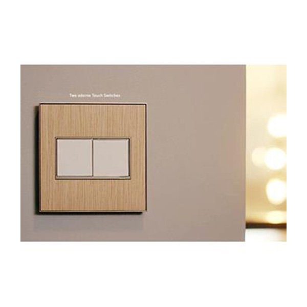 adorne Paddle Switch, 2-Module