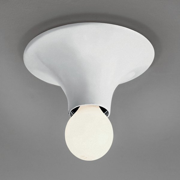 Teti Wall/Ceiling Light