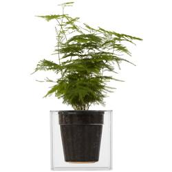 Boskke Cube Plant Pot