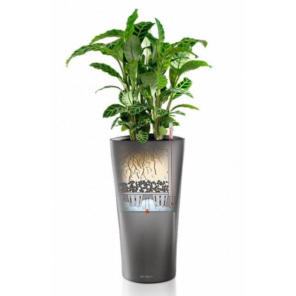 Delta 30 Self Watering Planter