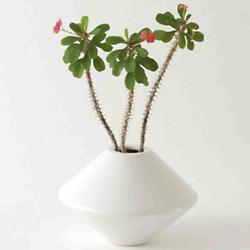 Architectural Pottery IN1 Planter